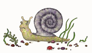 Snail | Also for the book of verse.