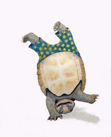 Tumbling Turtle.