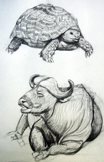 sketch1 sm