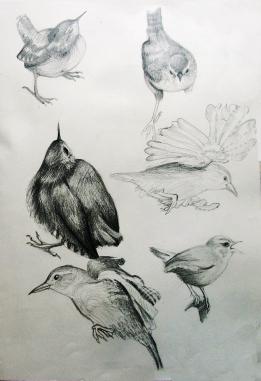 Sketch9sm