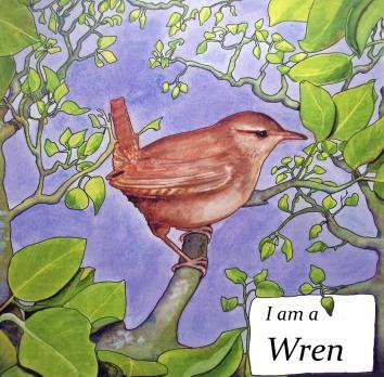 wren1wsm