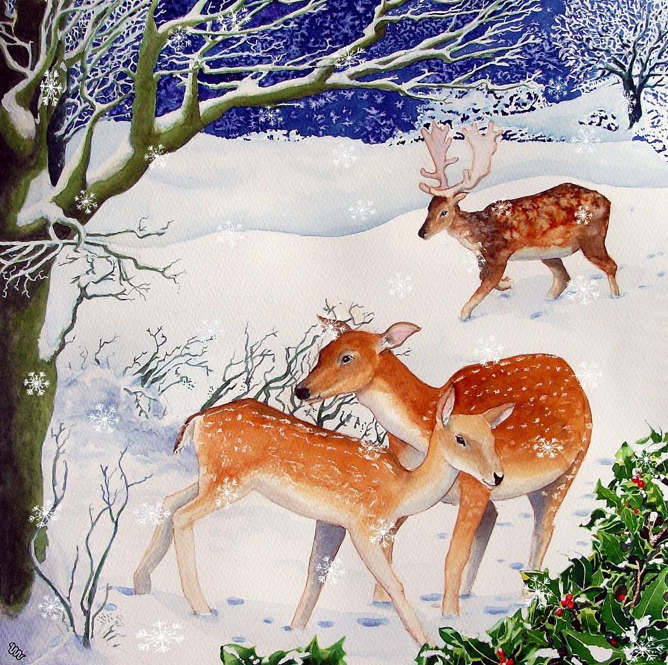 Christmas Cards – Worm Illustration