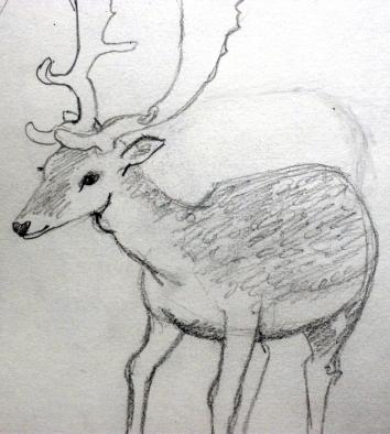 deer1sm