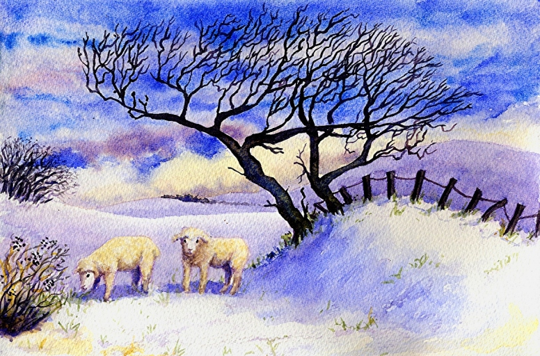 Sheep in the snowsm